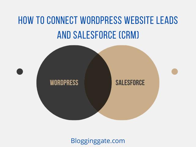How to Connect WordPress Website Leads And Salesforce (CRM)